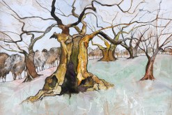 Portrait-of-a-Bradgate-Oak3