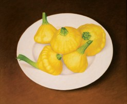 dylan-waldron-plate-summer-squashes